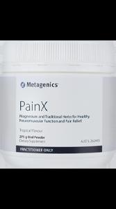 PainX 275g Powder